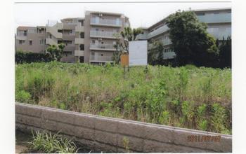 B墓地計画地の写真№3 2011.7.7.jpeg